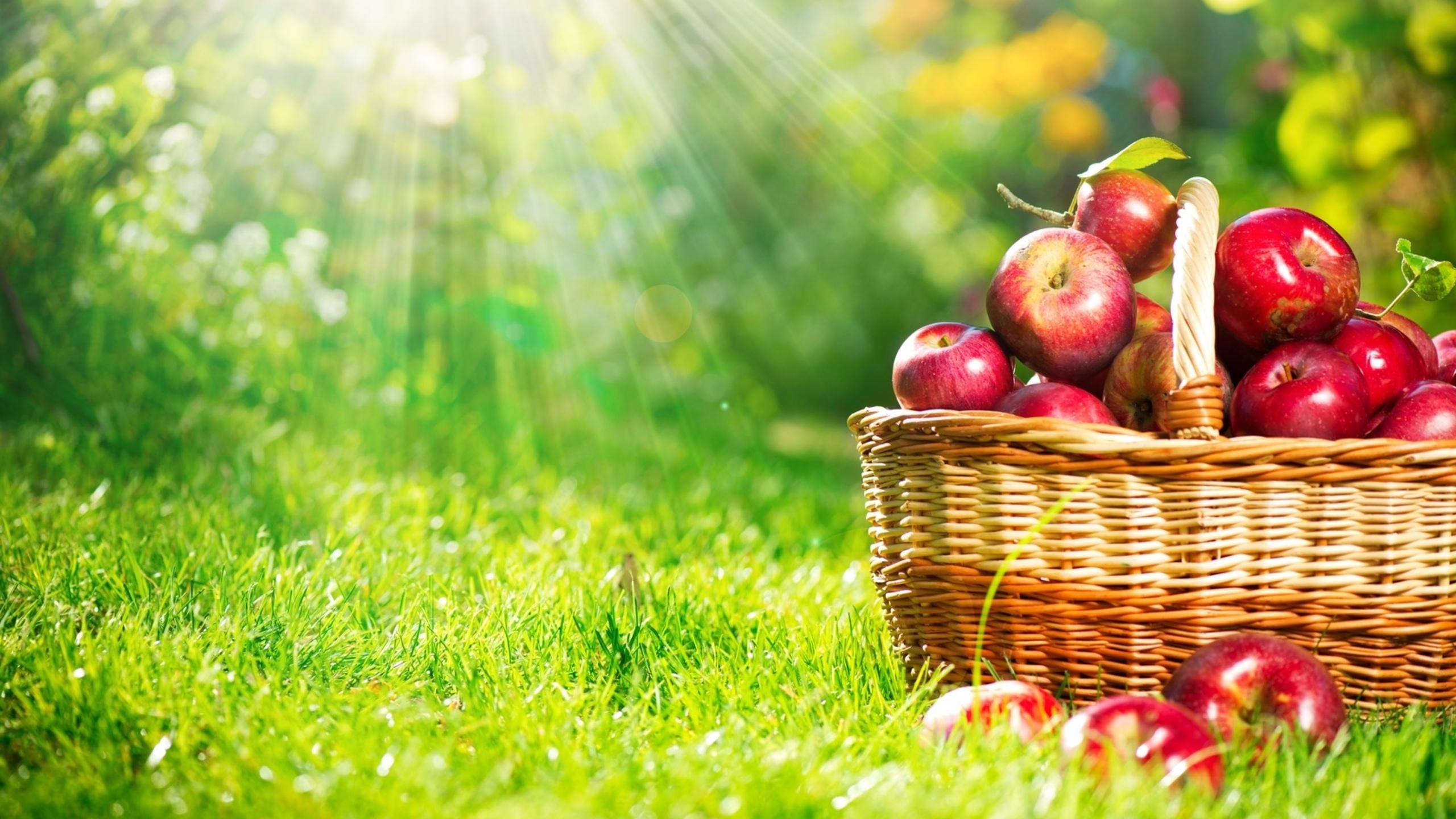 к чему снится красные яблоки на столе