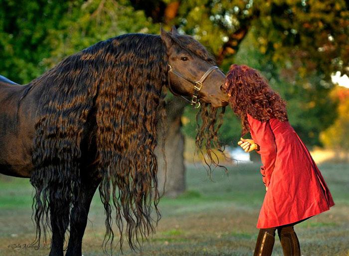Картинки по запросу чудо конь и кормить не надо веселые картинки